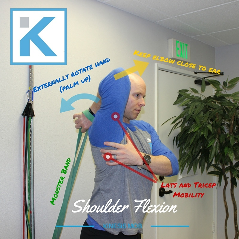 Shoulder Flexion with Band
